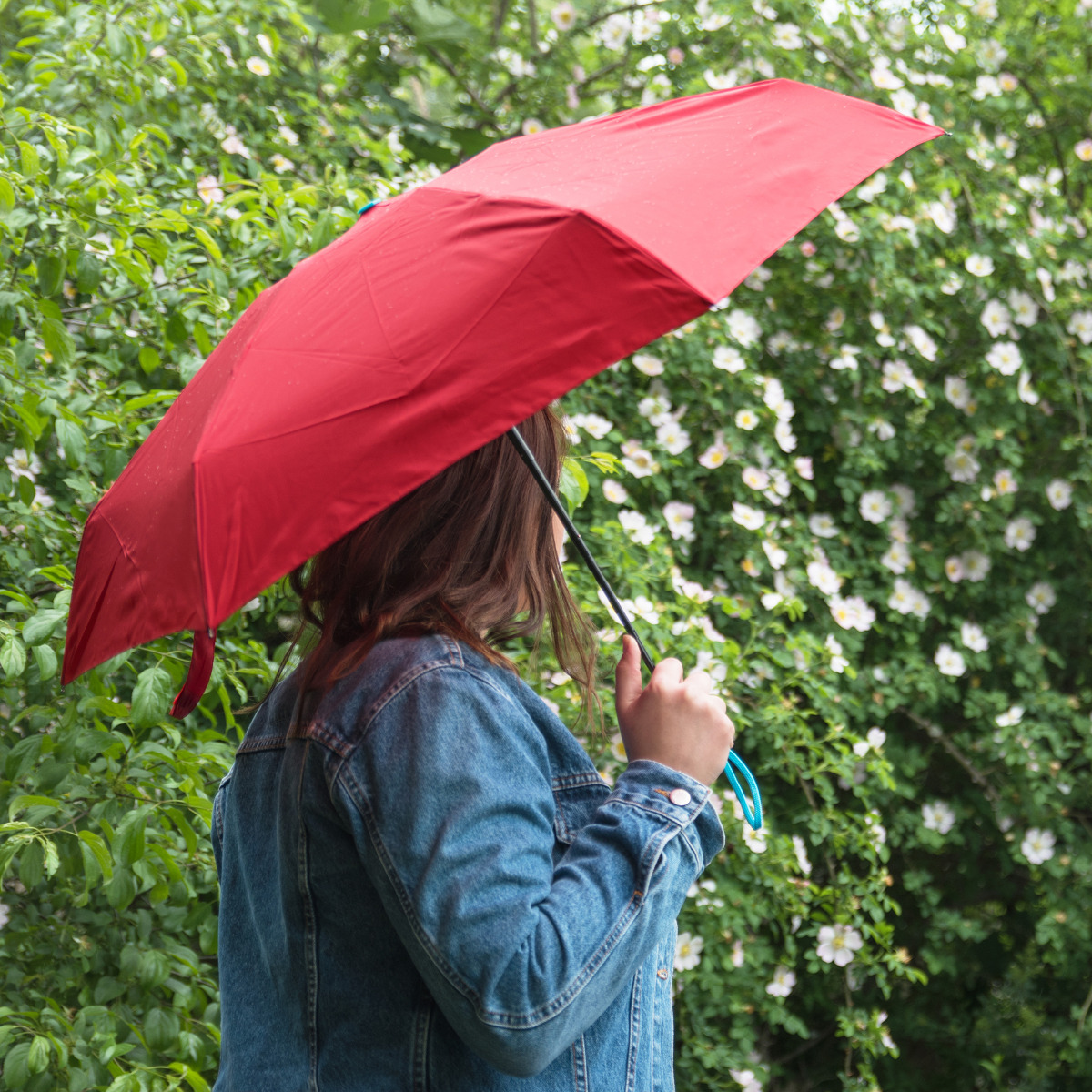 BG Berlin Aegis Umbrella Mini Ribbon Red Dáždnik by nám mal život uľahčovať, ale často je skôr na obtiaž.  - kompaktná veľkosť - nízka hmotnosť - rýchloschnúci materiál s teflonovým povrchom, ktorý predĺži jeho životnosť - ľahko sa skladá a rozkladá - praktické vodotesné puzdro